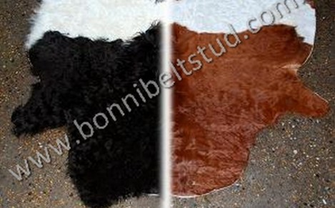 Bonnibelt Belted Galloway split Hides display